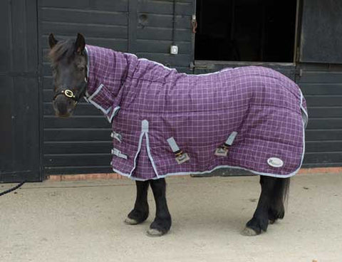 Boston Pony Stable Rug 200g