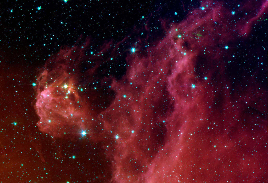 Infrared Orion's Head Stars