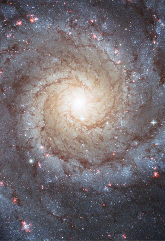 Space Poster of the M74 Galaxy