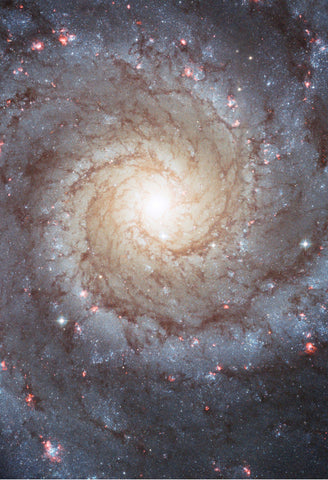 Space Poster of the M74 Galaxy Fine Art Print