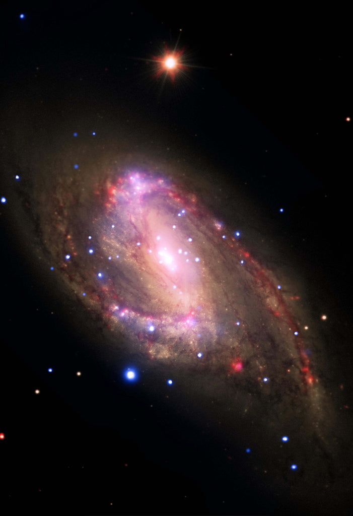 Space Poster of NGC 3627