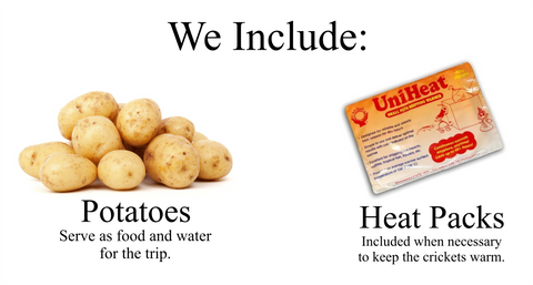 We include potatoes so the crickets have a source of food and water. We also include heatpacks, when necessary.