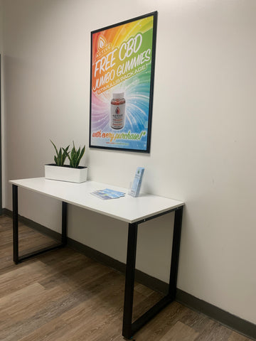 succulent on white display table with framed poster on white wall