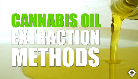 CBD extraction, cannabis oil extraction methods, CBD extraction methods, cannabinoid extraction