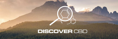 Discover CBD Retail Cannabidiol Store Franchise Program News Update