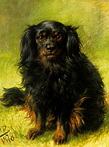 M. Bonheur-Black And Tan Toy Spaniel