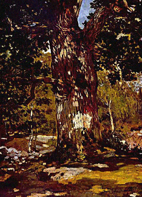 Claude Monet-Bodmer Oak