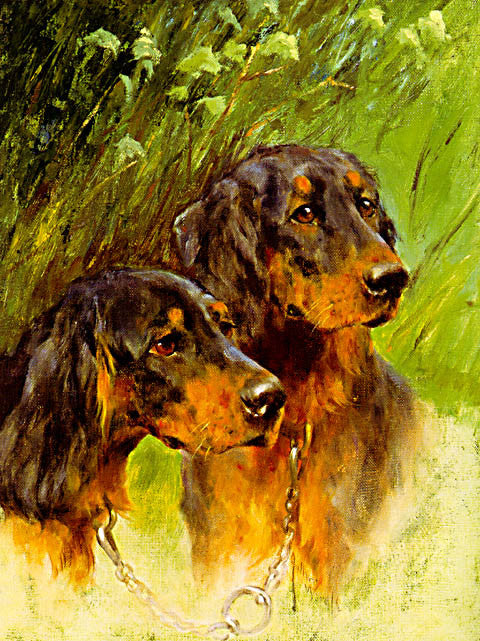 Arthur Wardle-Brace Of Gordon Setters