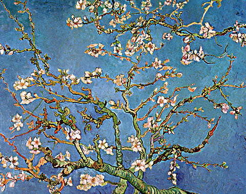 Vincent Van Gogh-Branches Of An Almond Tree In Blossom