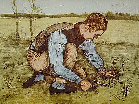 Vincent Van Gogh-Cutting Grass 1881