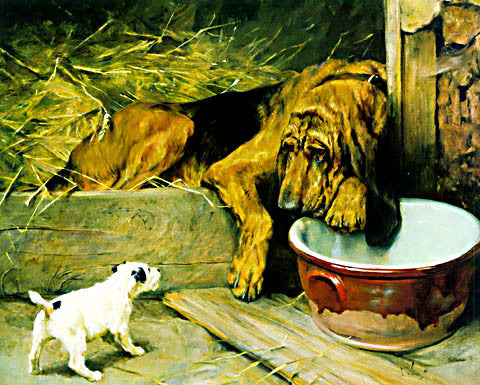 Arthur Wardle-Patience