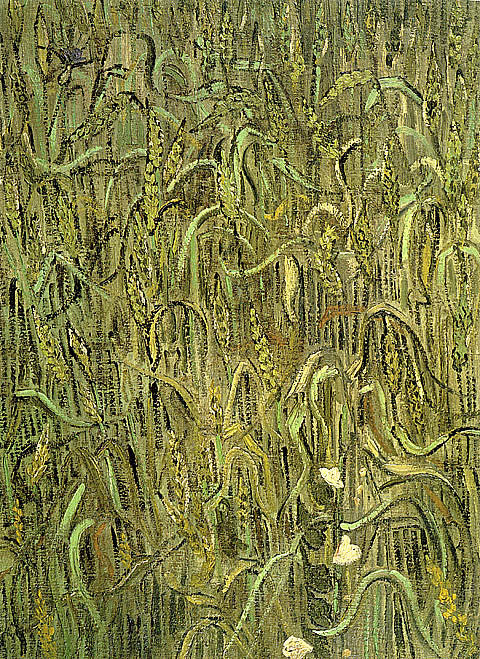 Vincent Van Gogh-Ears Of Wheat