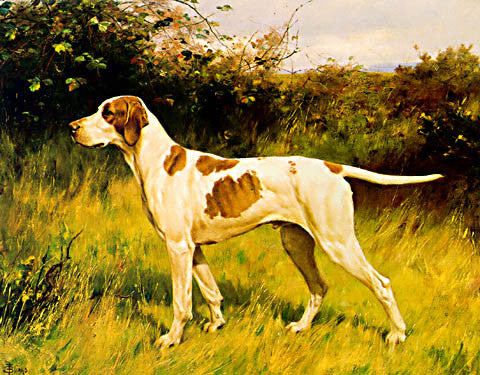 A. Blinks-English Pointer