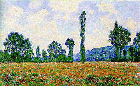 Claude Monet-Field of Poppies