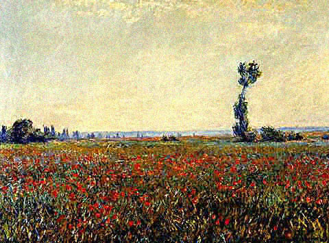 Claude Monet-Field of Poppies II