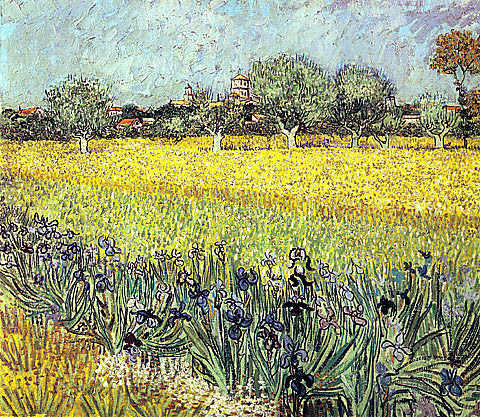 Vincent Van Gogh-Field With Flowers