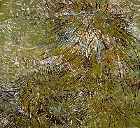 Vincent Van Gogh-Grass 1889