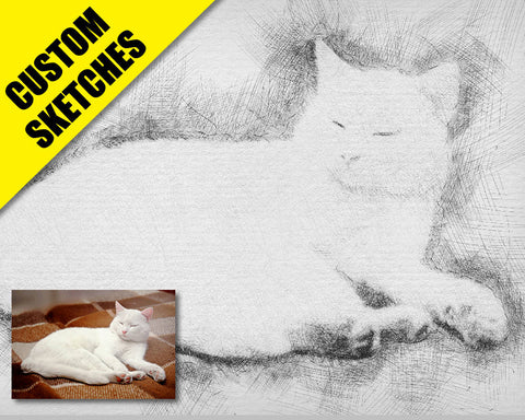 Gifts for cat lovers custom sketch-1
