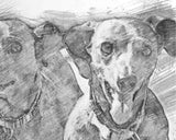 Dog memorial gifts custom sketch-2