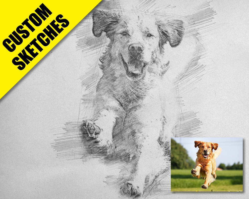 Gift for dog lovers custom sketch-1