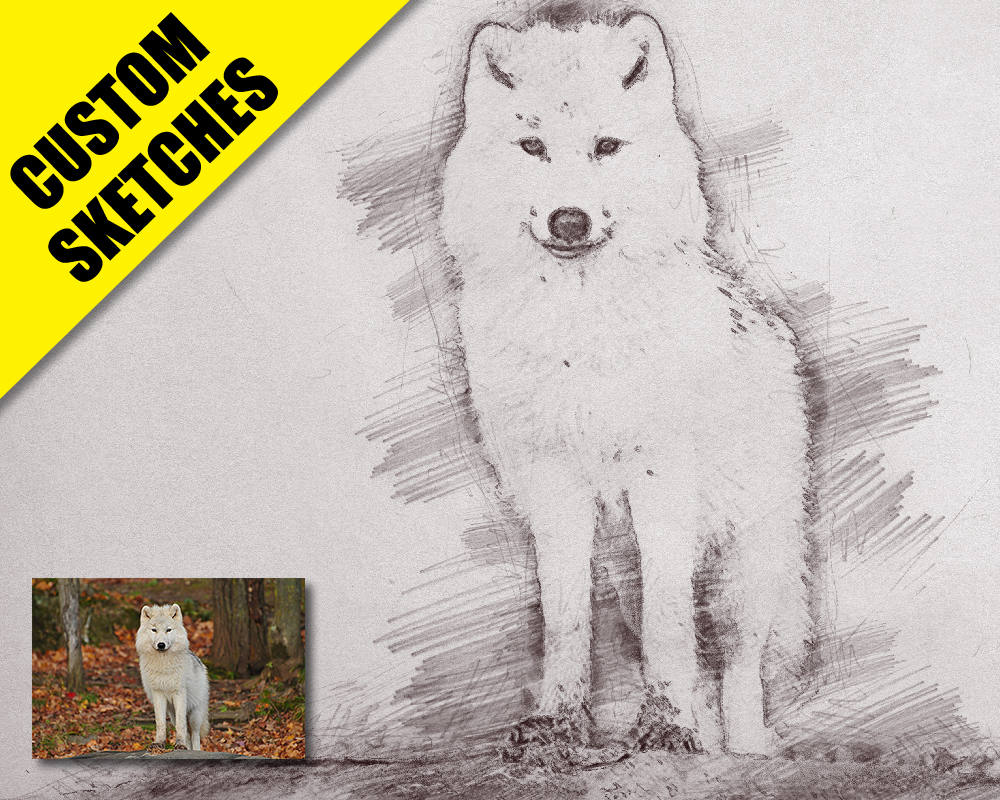 Gifts for dog lover custom sketch-1