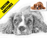 Dog lovers gift custom sketch-1