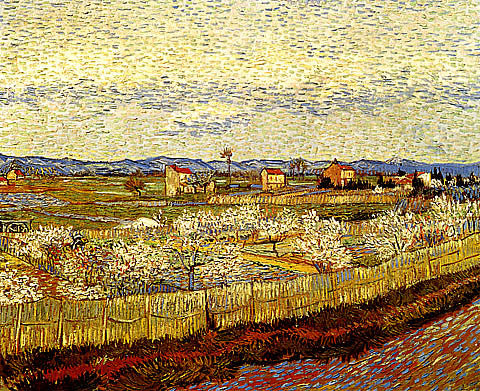 Vincent Van Gogh-La Crau With Peach Trees In Bloom