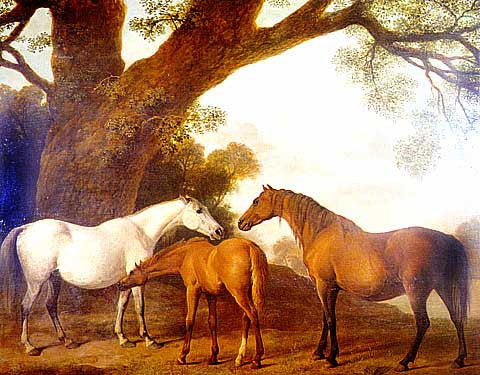 George Stubbs-Mares And Foal