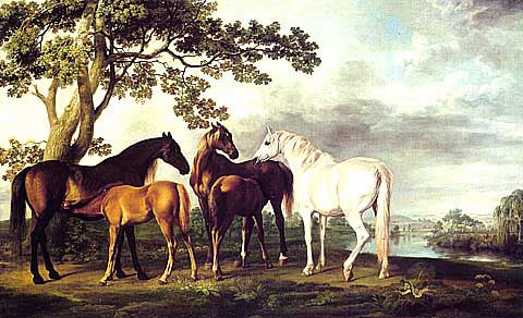 George Stubbs-Mares And Foals In A River