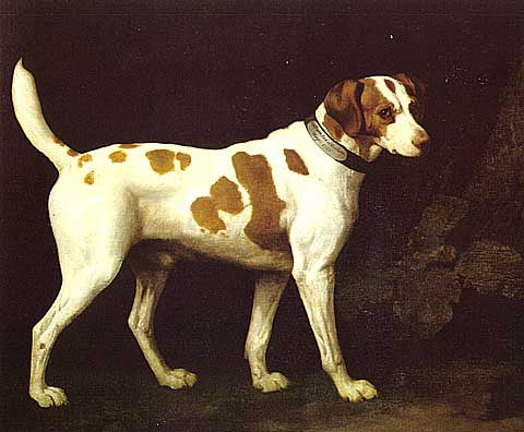 George Stubbs-Provenance