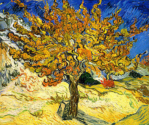Vincent Van Gogh-Mulberry Tree