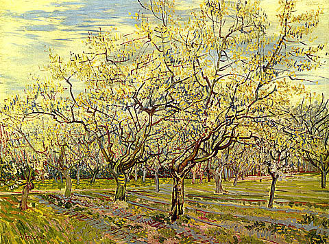 Vincent Van Gogh-Orchard With Blossoming Plum Trees