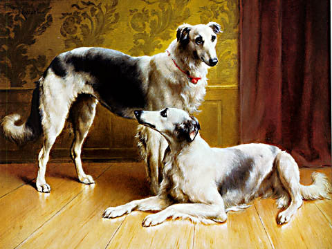 A. Reichert-Couple Of Borzoi