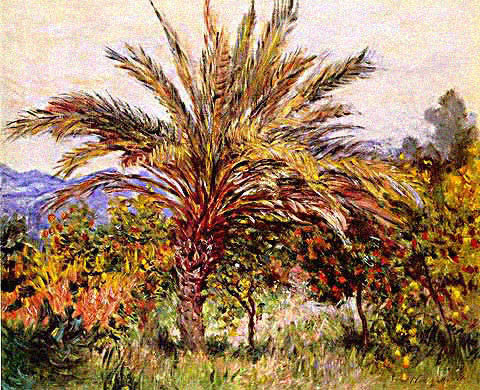 Claude Monet-Palm Tree at Bordighera