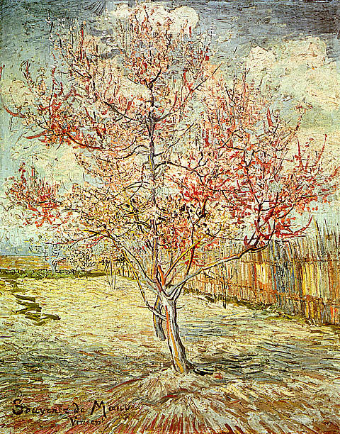 Vincent Van Gogh-Pink Peach Trees