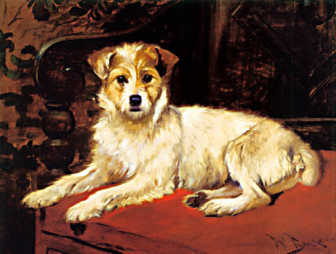 L. Barker-White Terrier