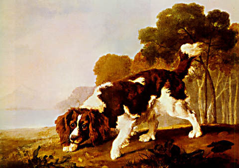 George Stubbs-Spaniel In A Landscape