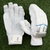 Centurion Senator Elite Batting Gloves Main Image