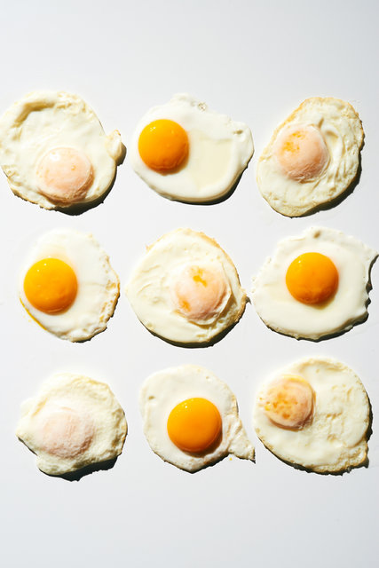 indian goods co friday link pack the egg shop nytimes surprising facts about eggs