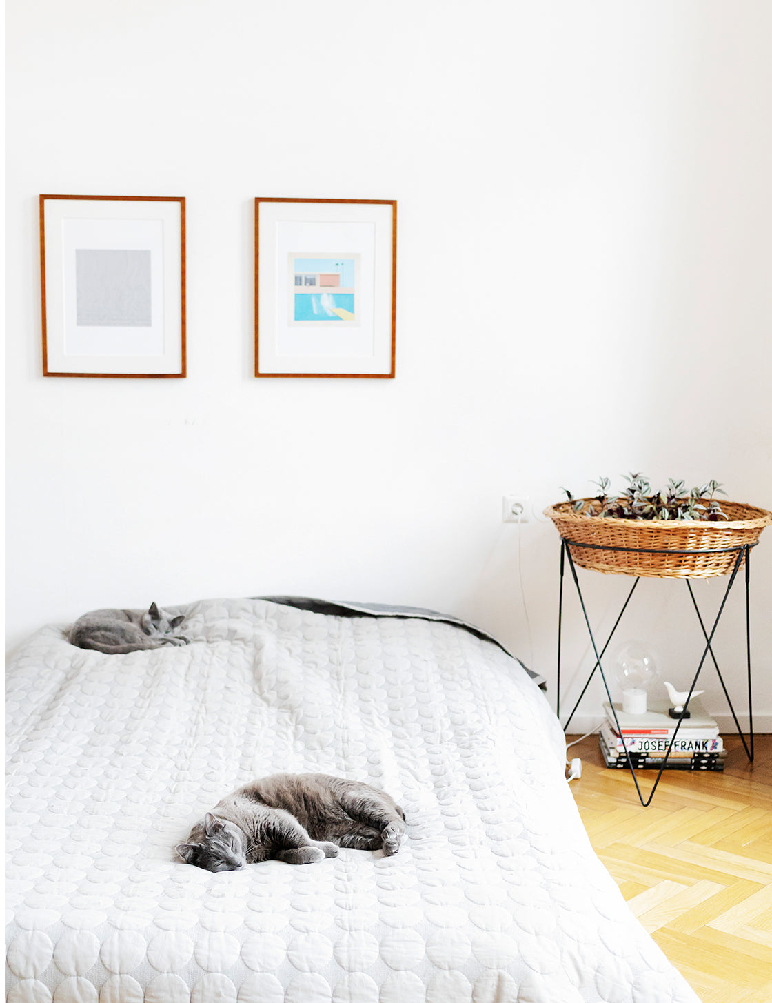 indian goods company online store contemporary indian design blog considered living inspiration home tour architect maria megina graphic designer editor stephan goeschl vienna austria apartment cats minimal history belonging white bedroom