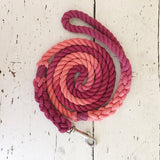 Ombre Dog Leash- Coral Charm
