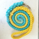 Ombre Dog Leash- Aqua and Yellow