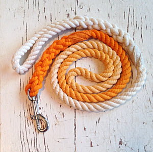 Orange Dog Leash