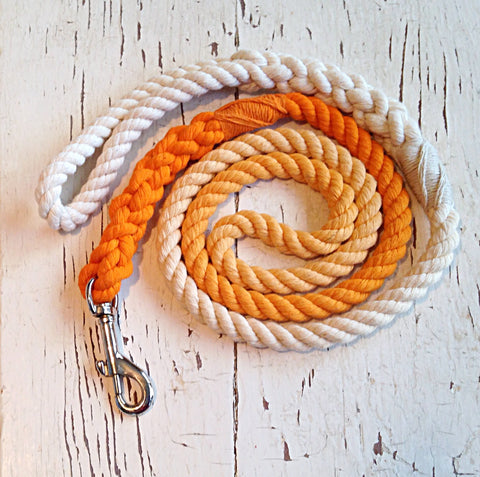 Ombre Dog Leash-Orange