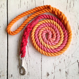 Ombre Dog Leash-Tequila Sunrise