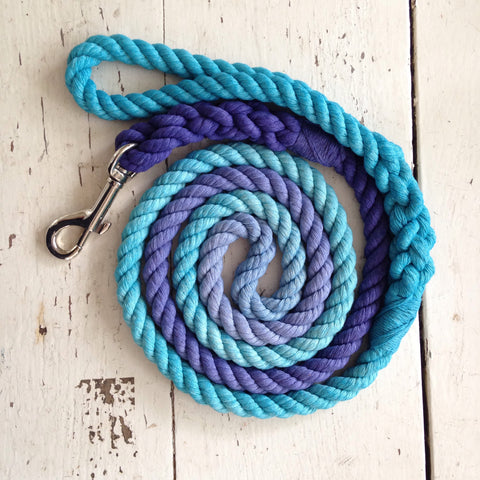 Ombre Dog Leash-Indigo and Aqua