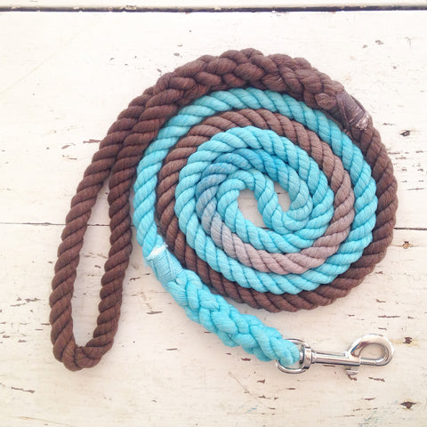 Ombre Dog Leash-Aqua and Brown