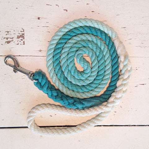 Ombre Dog Leash-Teal