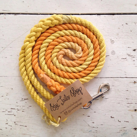 Ombre Dog Leash-Tangerine Dream