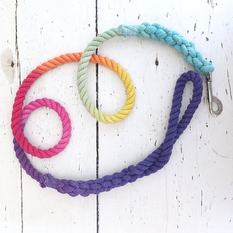 Ombre Dog Leash-Rainbow